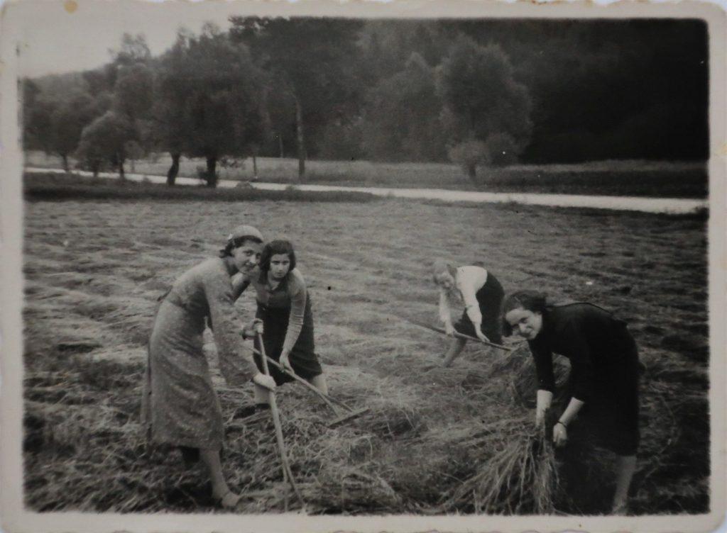 Young Women in a Chrobacze Field
